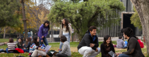 Programa Talento e Inclusión