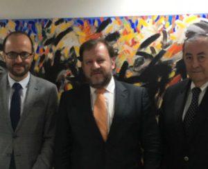 Clase magistral de los problemas y desafios de los procesos colectivos Diego Palomo Lorenzo Bujosa y Raúl Tavolari jpg